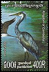 Cl: Great-billed Heron (Ardea sumatrana) new (2005)  [5/12]
