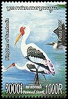 Cl: Great-billed Heron (Ardea sumatrana)(Repeat for this country)  new (2005)  [5/12]