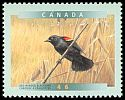 Cl: Red-winged Blackbird (Agelaius phoeniceus) <<Carouge a epaulettes>>  SG 1866 (1999) 85