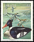 Cl: Red-breasted Merganser (Mergus serrator) SG 2412 (2006) 110 [5/31]