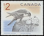 Cl: Peregrine Falcon (Falco peregrinus) <<Faucun pelerin>> (Repeat for this country)  SG 1760 (2005) 225 [5/12]