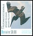 Cl: Brown Pelican (Pelecanus occidentalis) <<Bruine Pelikaan>>  new (2016)