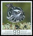 Cl: Black-and-white Warbler (Mniotilta varia) new (2017)