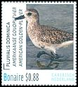 Cl: American Golden-Plover (Pluvialis dominica) <<Amerikaanse Goudplevier>>  new (2016)