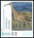 Cl: Whimbrel (Numenius phaeopus) <<Regenwulp>>  new (2016)