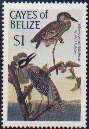Cayes of Belize not catalogued (1985)