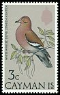Cl: White-winged Dove (Zenaida asiatica) SG 337 (1974) 200