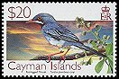 Cl: Red-legged Thrush (Turdus plumbeus coryi) SG 1119 (2006) 3000