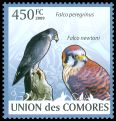 Cl: Peregrine Falcon (Falco peregrinus)(Repeat for this country)  new (2009)