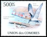 Cl: Black-naped Tern (Sterna sumatrana)(I do not have this stamp)  new (2010)