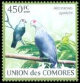 Cl: Comoro Blue-Pigeon (Alectroenas sganzini)(Endemic or near-endemic)  new (2009)