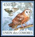 Cl: Barn Owl (Tyto alba)(Repeat for this country)  new (2009)
