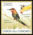 Cl: Madagascar Bee-eater (Merops superciliosus)(Repeat for this country)  new (2009)