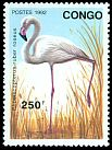 Cl: Greater Flamingo (Phoenicopterus roseus) SG 1316 (1992) 275