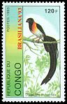 Cl: Eastern Paradise-Whydah (Vidua paradisaea)(Out of range)  new (1993)