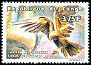 Cl: Western Marsh-Harrier (Circus aeruginosus) <<Busard des roseaux>> (not catalogued)  (1999)