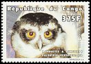 Cl: Spectacled Owl (Pulsatrix perspicillata)(Out of range)  new (1999)