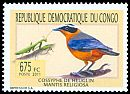 Cl: White-browed Robin-Chat (Cossypha heuglini) <<Cossyphe de Heuglin>>  new (2011)  [7/32]