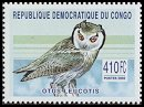Cl: Southern White-faced Owl (Ptilopsis granti)(not catalogued)  (2002)