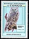 Cl: Spotted Eagle-Owl (Bubo africanus)(not catalogued)  (2006)