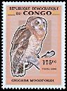Cl: African Wood-Owl (Strix woodfordii)(Repeat for this country) (not catalogued)  (2007)