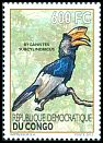 Cl: Black-and-white-casqued Hornbill (Ceratogymna subcylindricus) new (2012)