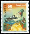 Cl: Rock Pigeon (Columba livia) SG 60 (1997) 50