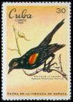 Cl: Red-shouldered Blackbird (Agelaius assimilis) <<Mayito de la Cienaga>>  SG 1723 (1969) 65