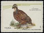 Cl: Northern Bobwhite (Colinus virginianus cubanensis) <<Codorniz>> (Repeat for this country)  SG 1799 (1970) 150