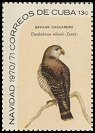 Cl: Hook-billed Kite (Chondrohierax uncinatus) <<Gavilan caguarero>> (Repeat for this country)  SG 1815a (1970) 90