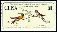 Cl: Ruby-throated Hummingbird (Archilochus colubris) <<Colibri>>  SG 1897 (1971) 575