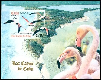 Cl: Caribbean Flamingo (Phoenicopterus ruber)(Repeat for this country)  SG 5072 (2007)