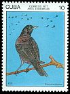 Cl: Cuban Blackbird (Dives atroviolacea) <<Toti>> (Endemic or near-endemic)  SG 2355 (1977) 110