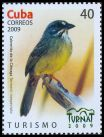 Cl: Zapata Sparrow (Torreornis inexpectata) <<Cabrerito de la Clenaga>> (Endemic or near-endemic)  SG 5428 (2009)