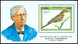 Cl: Cuban Vireo (Vireo gundlachii)(Endemic or near-endemic)  SG 4068 (1996) 0