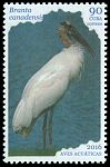 Cl: Wood Stork (Mycteria americana) new (2016)