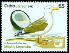 Cl: Lesser Black-backed Gull (Larus fuscus) new (2012)