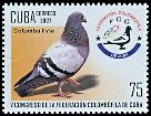 Cl: Rock Pigeon (Columba livia)(Introduced)  SG 5040 (2007)