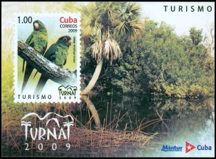 Cl: Cuban Parakeet (Aratinga euops) <<Catey>> (Endemic or near-endemic)  SG 5433 (2009)