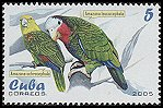 Cl: Cuban Parrot (Amazona leucocephala)(Endemic or near-endemic)  SG 4818 (2005)