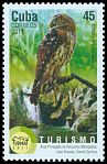 Cl: Bare-legged Owl (Gymnoglaux lawrencii)(Endemic or near-endemic)  new (2011)