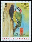 Cl: Cuban Woodpecker (Xiphidiopicus percussus)(Endemic or near-endemic)  SG 5215 (2008)