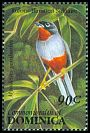 Cl: Rufous-throated Solitaire (Myadestes genibarbis) SG 1672 (1993) 70