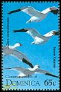 Cl: Snow Goose (Chen caerulescens)(Out of range)  SG 1942 (1995) 30