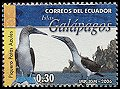 Cl: Blue-footed Booby (Sula nebouxii)(Endemic or near-endemic)  new (2006)