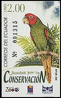 Cl: Red-masked Parakeet (Aratinga erythrogenys) <<Perico Cachetirojo>>  new (2006)