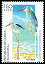 Cl: Black-winged Stilt (Himantopus himantopus) SG 172 (1992) 40