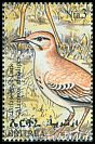 Cl: Greater Hoopoe-Lark (Alaemon alaudipes) SG 413 (1998) 130