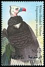 Cl: White-headed Vulture (Trigonoceps occipitalis) SG 415 (1998) 130