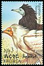 Cl: Egyptian Vulture (Neophron percnopterus) SG 416 (1998) 130
